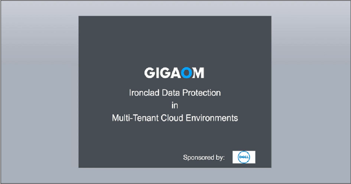 Iron Clad Data Protection in Multi-Tenant Cloud Environments