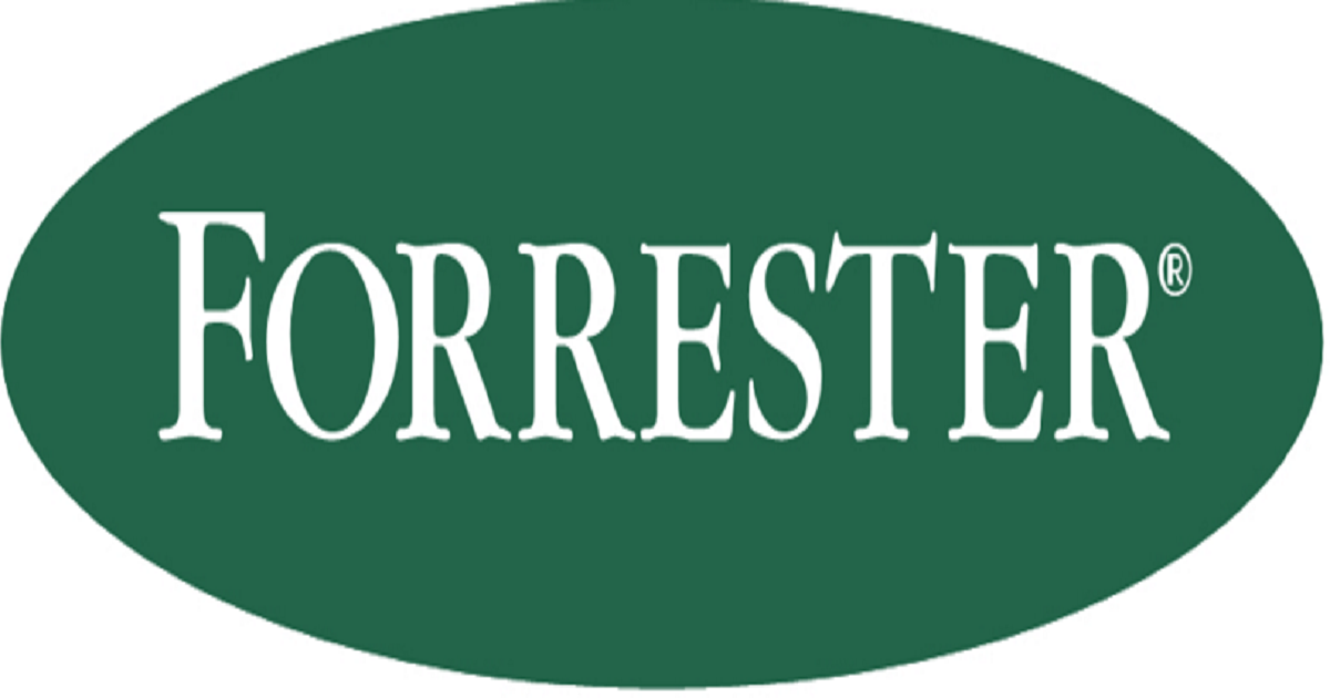 Introducing The Forrester Wave™: B2E Cloud IAM, Q2 2015