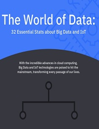 RED PIXIE - THE WORLD OF DATA INFOGRAPHIC BLACK AND BLUE