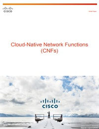 CLOUD-NATIVE NETWORK FUNCTIONS